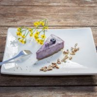 Raw Vegan Blueberry Cake
